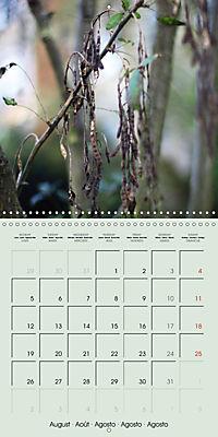A WALK (Wall Calendar 2019 300 × 300 mm Square) - Produktdetailbild 8