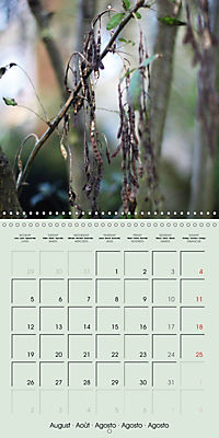 A WALK (Wall Calendar 2019 300 × 300 mm Square) - Produktdetailbild 8