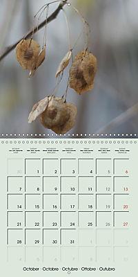A WALK (Wall Calendar 2019 300 × 300 mm Square) - Produktdetailbild 10