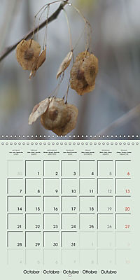 A WALK (Wall Calendar 2019 300 × 300 mm Square) - Produktdetailbild 10
