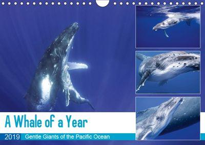 A Whale of a Year (Wall Calendar 2019 DIN A4 Landscape), Travelpixx. com