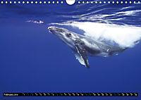 A Whale of a Year (Wall Calendar 2019 DIN A4 Landscape) - Produktdetailbild 2
