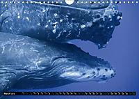 A Whale of a Year (Wall Calendar 2019 DIN A4 Landscape) - Produktdetailbild 3