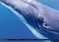 A Whale of a Year (Wall Calendar 2019 DIN A4 Landscape) - Produktdetailbild 11