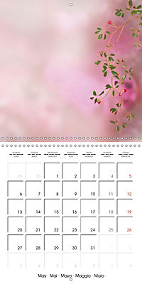 A Word - A picture (Wall Calendar 2019 300 × 300 mm Square) - Produktdetailbild 5