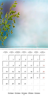 A Word - A picture (Wall Calendar 2019 300 × 300 mm Square) - Produktdetailbild 10