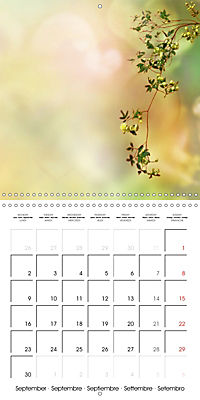 A Word - A picture (Wall Calendar 2019 300 × 300 mm Square) - Produktdetailbild 9