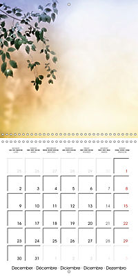 A Word - A picture (Wall Calendar 2019 300 × 300 mm Square) - Produktdetailbild 12