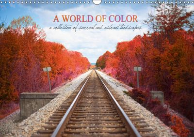 A World of Color (Wall Calendar 2019 DIN A3 Landscape), Samantha Fortenberry