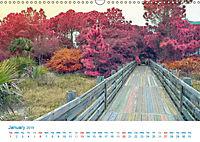 A World of Color (Wall Calendar 2019 DIN A3 Landscape) - Produktdetailbild 1