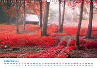 A World of Color (Wall Calendar 2019 DIN A3 Landscape) - Produktdetailbild 12