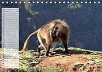 Abenteuer Äthiopien (Tischkalender 2019 DIN A5 quer) - Produktdetailbild 11