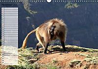 Abenteuer Äthiopien (Wandkalender 2019 DIN A3 quer) - Produktdetailbild 11