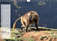Abenteuer Äthiopien (Wandkalender 2019 DIN A4 quer) - Produktdetailbild 11