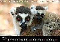 Abenteuer Madagaskar (Tischkalender 2019 DIN A5 quer) - Produktdetailbild 3