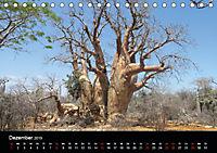 Abenteuer Madagaskar (Tischkalender 2019 DIN A5 quer) - Produktdetailbild 12