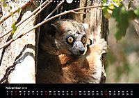 Abenteuer Madagaskar (Wandkalender 2019 DIN A3 quer) - Produktdetailbild 11