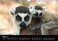 Abenteuer Madagaskar (Wandkalender 2019 DIN A4 quer) - Produktdetailbild 3