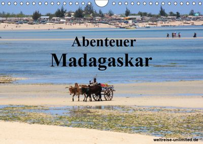 Abenteuer Madagaskar (Wandkalender 2019 DIN A4 quer), Weltreise-unlimited. de