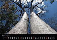 Abenteuer Madagaskar (Wandkalender 2019 DIN A4 quer) - Produktdetailbild 2