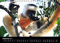 Abenteuer Madagaskar (Wandkalender 2019 DIN A4 quer) - Produktdetailbild 9
