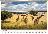 Abenteuer Masai Mara (Wandkalender 2019 DIN A3 quer) - Produktdetailbild 6