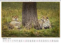 Abenteuer Masai Mara (Wandkalender 2019 DIN A3 quer) - Produktdetailbild 10