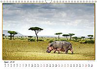 Abenteuer Masai Mara (Wandkalender 2019 DIN A4 quer) - Produktdetailbild 4