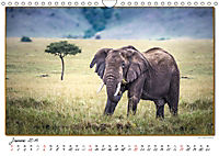 Abenteuer Masai Mara (Wandkalender 2019 DIN A4 quer) - Produktdetailbild 1