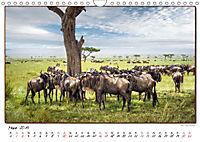 Abenteuer Masai Mara (Wandkalender 2019 DIN A4 quer) - Produktdetailbild 3
