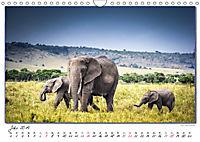 Abenteuer Masai Mara (Wandkalender 2019 DIN A4 quer) - Produktdetailbild 7