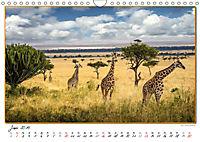 Abenteuer Masai Mara (Wandkalender 2019 DIN A4 quer) - Produktdetailbild 6