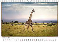 Abenteuer Masai Mara (Wandkalender 2019 DIN A4 quer) - Produktdetailbild 2