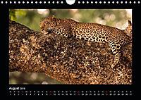 Abenteuer Safari (Wandkalender 2019 DIN A4 quer) - Produktdetailbild 8