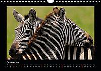 Abenteuer Safari (Wandkalender 2019 DIN A4 quer) - Produktdetailbild 10