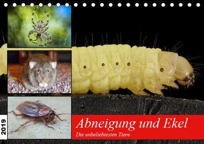 Abneigung und Ekel. Die unbeliebtesten Tiere (Tischkalender 2019 DIN A5 quer), Rose Hurley