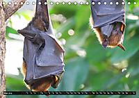Abneigung und Ekel. Die unbeliebtesten Tiere (Tischkalender 2019 DIN A5 quer) - Produktdetailbild 5