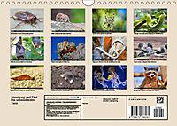 Abneigung und Ekel. Die unbeliebtesten Tiere (Wandkalender 2019 DIN A4 quer) - Produktdetailbild 13