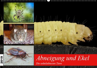 Abneigung und Ekel. Die unbeliebtesten Tiere (Wandkalender 2019 DIN A2 quer), Rose Hurley