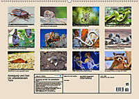 Abneigung und Ekel. Die unbeliebtesten Tiere (Wandkalender 2019 DIN A2 quer) - Produktdetailbild 13