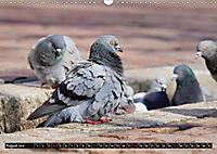 Abneigung und Ekel. Die unbeliebtesten Tiere (Wandkalender 2019 DIN A3 quer) - Produktdetailbild 8