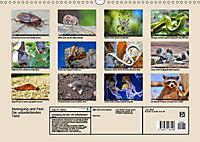 Abneigung und Ekel. Die unbeliebtesten Tiere (Wandkalender 2019 DIN A3 quer) - Produktdetailbild 13
