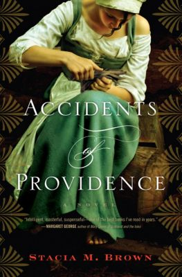 Accidents of Providence, Stacia M. Brown, Stacia Brown