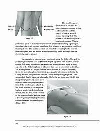 Acupuncture Energetics - Produktdetailbild 1