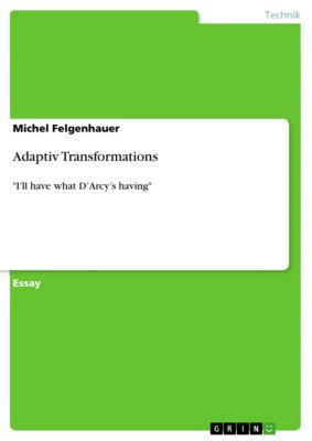 Adaptiv Transformations, Michel Felgenhauer