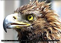 Adler und Greife - Könige des Himmels (Wandkalender 2018 DIN A2 quer) - Produktdetailbild 10