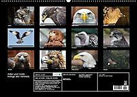 Adler und Greife - Könige des Himmels (Wandkalender 2018 DIN A2 quer) - Produktdetailbild 13