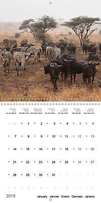 Adventure South Africa 2019 (Wall Calendar 2019 300 × 300 mm Square) - Produktdetailbild 1