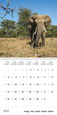 Adventure South Africa 2019 (Wall Calendar 2019 300 × 300 mm Square) - Produktdetailbild 8