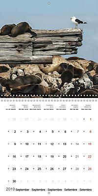 Adventure South Africa 2019 (Wall Calendar 2019 300 × 300 mm Square) - Produktdetailbild 9